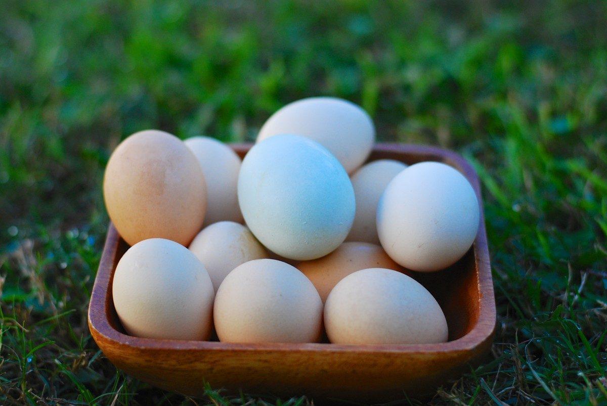 Pastured Eggs Whole Foods