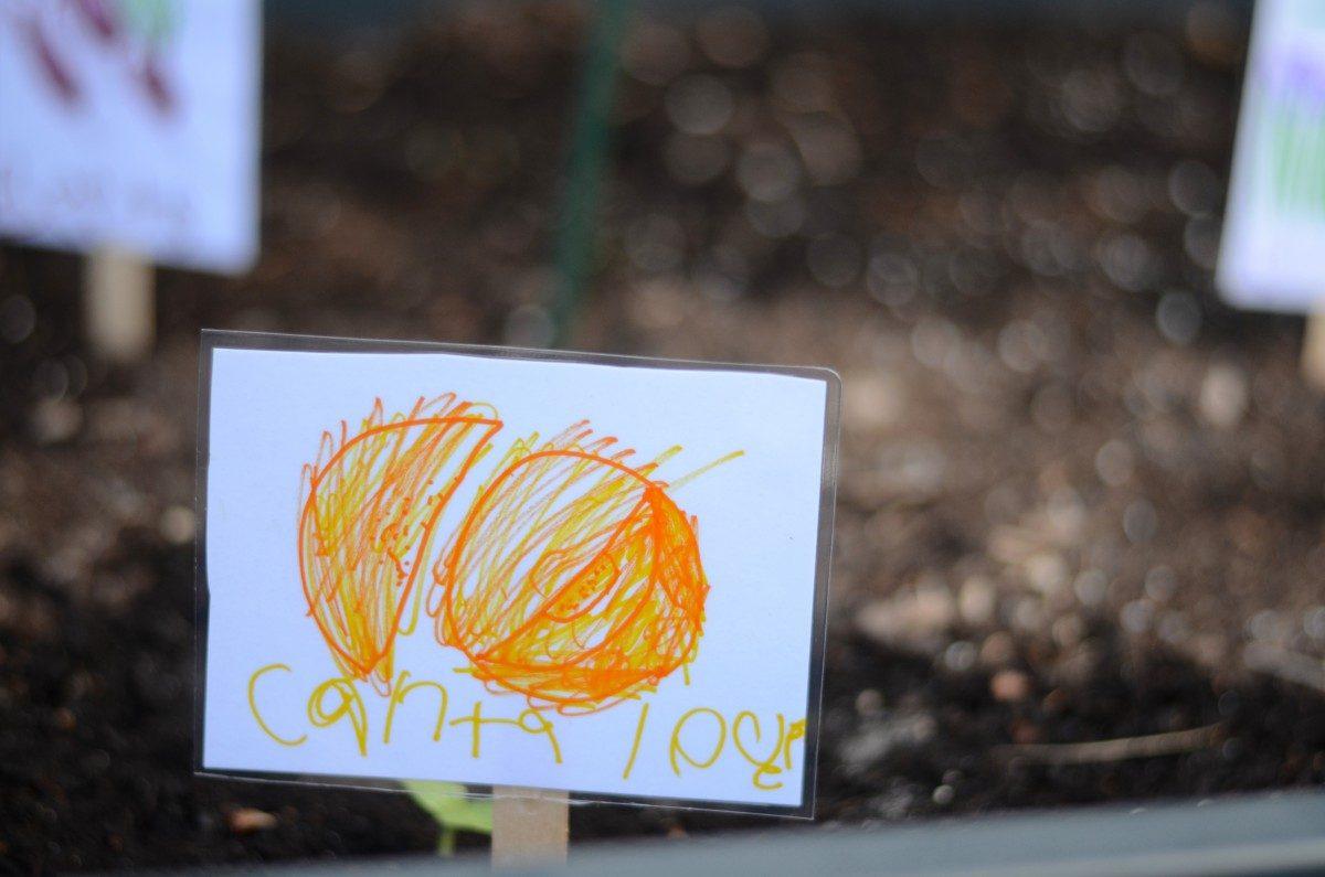 garden marker kid craft diy