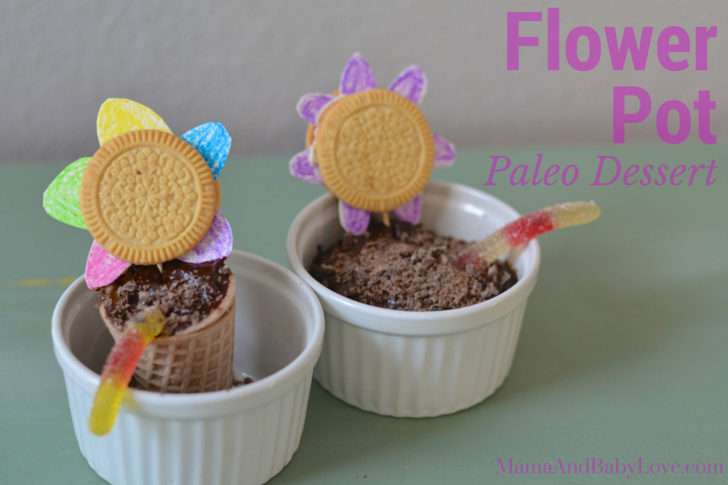 "Flower Pot Dessert {Paleo ""dirt"" chocolate pudding}"