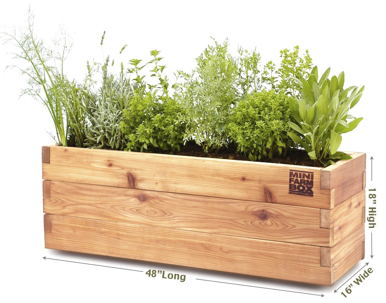 My New Garden Containers From EarthEasy.com and a HUGE Giveaway!