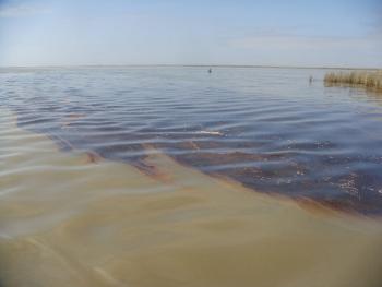 Oil Reaches Louisana Shores