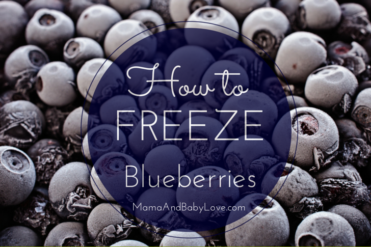 How to Freeze Blueberries 1