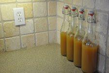 Fermented Lemonade 1