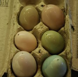 Natural Easter Egg Coloring 1