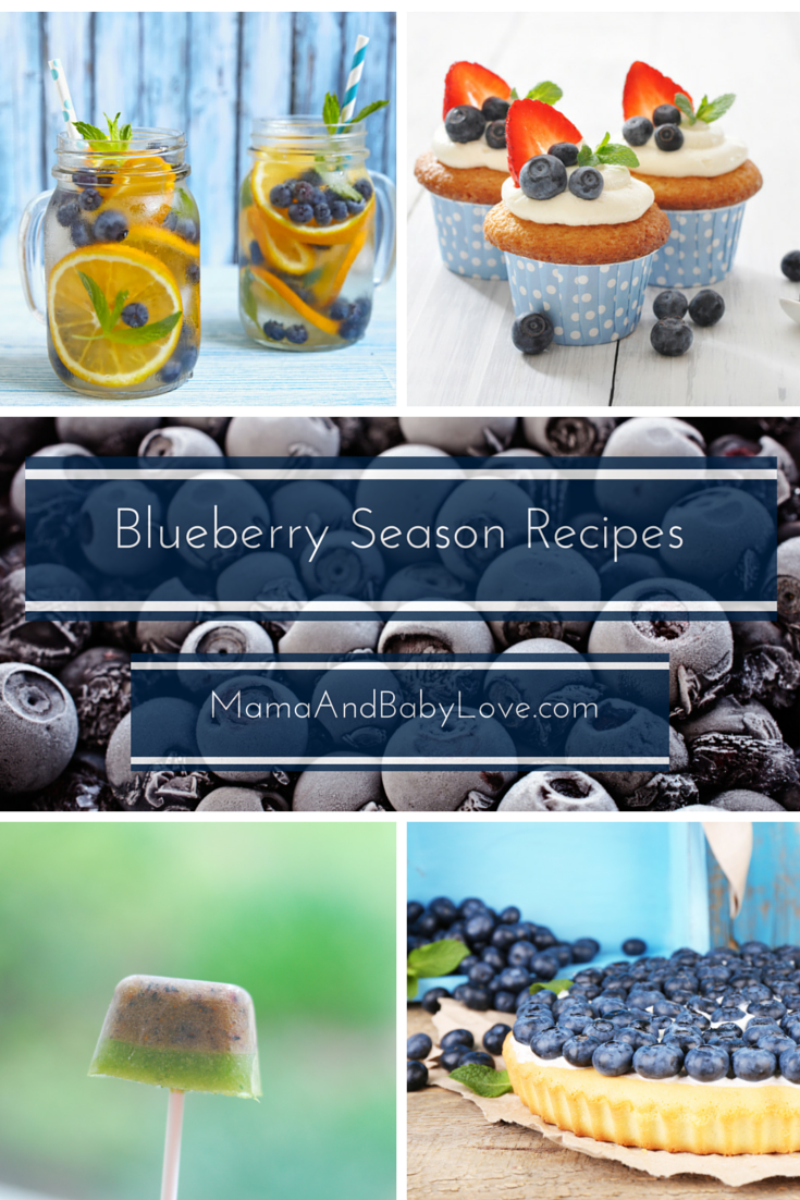 Blueberry Season Recipes Pinterest Graphic