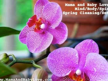 MBL Mind/Body/Spirit Spring Cleaning/Detox
