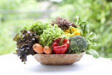 Vary Your Veggies 1