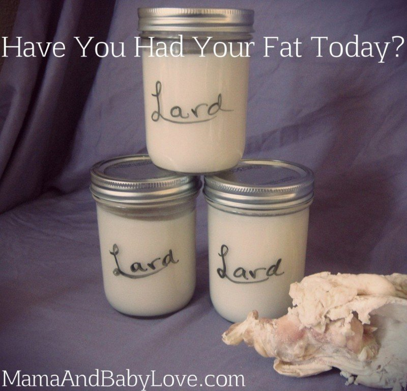 Have You Had Your Fat Today?