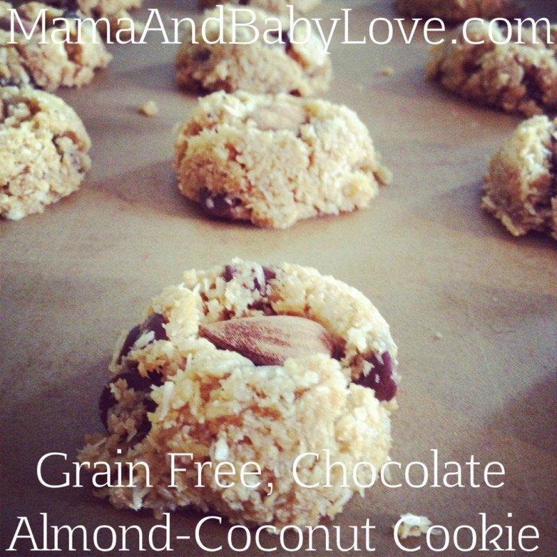 Grain Free Chocolate Almond-Coconut Cookies