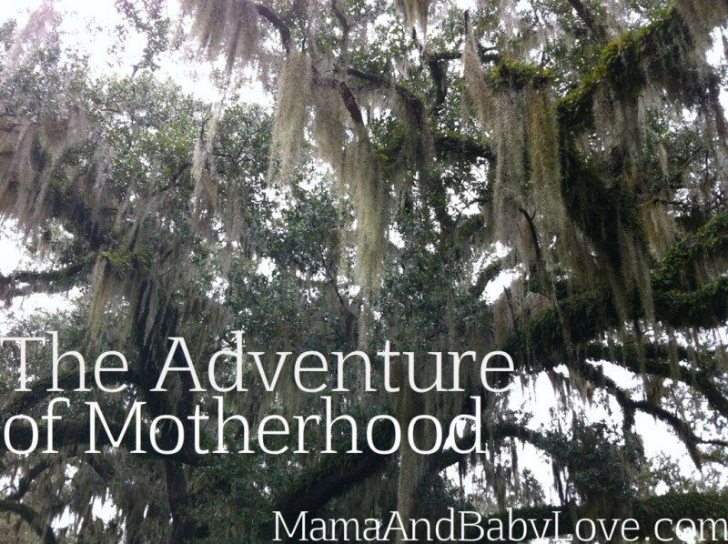 The Adventure of Motherhood