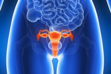 Causes of a Displaced Uterus