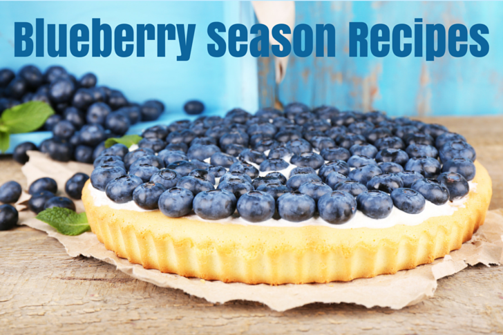 Blueberry Season Recipes